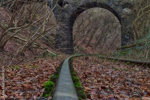 Papiers peints Route dans la forêt Alte Eisenbahnstrecke