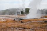 Yellowstone Landscape - 186456585