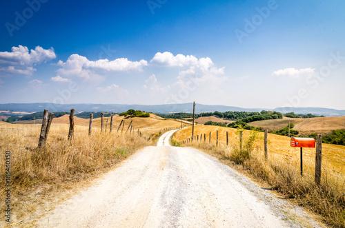 Fototapeta Strada in collina in Toscana