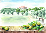 Empty table with olive brunch in olive grove landscape. Watercolor hand drawn background - 186461183