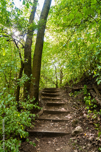 Papiers peints Route dans la forêt stone stairs surrounded by trees with sun rays