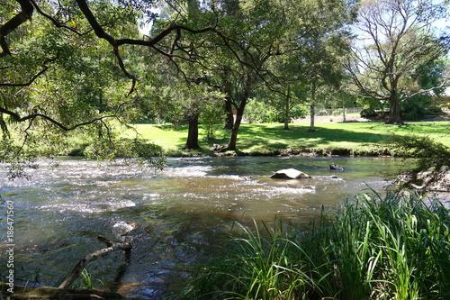 Papiers peints Rivière de la forêt Rippling river with grassy park