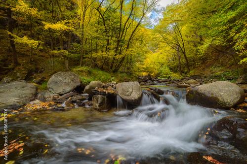 Foto Murales Slow waterfall