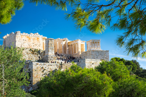Foto Murales Acropolis with Parthenon. View through a frame of green plants and trees, Athens, Greece.