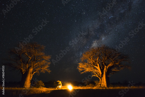 Foto op Plexiglas Baobab Camping under the milky way