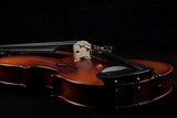Partial view of violin on black background - 186584935