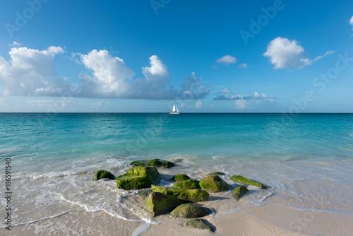 Foto op Aluminium Tropical strand Green rocks at Aruba beach