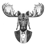 Moose, elk Animal wearing jacket with bow-tie and biker helmet or aviatior helmet. Elegant biker, motorcycle rider, aviator. Image for tattoo, t-shirt, emblem, badge, logo, patch - 186674302
