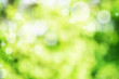 Abstract green bright bokeh background