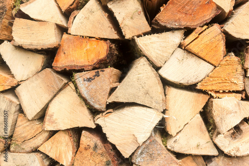 Poster Brandhout textuur Firewood Stackpile