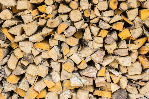 Poster Brandhout textuur Stack of wood or firewood, hacked trunks