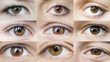 Eyes set brown