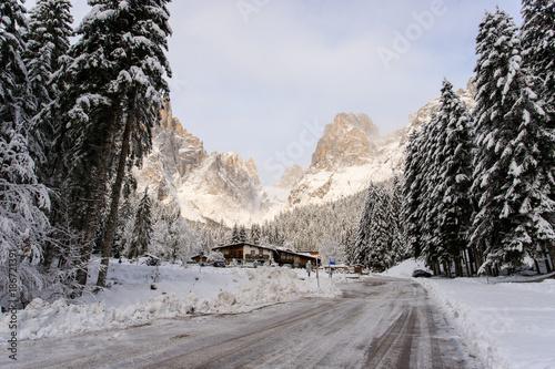 paesaggio invernale in Val Canali - Trentino