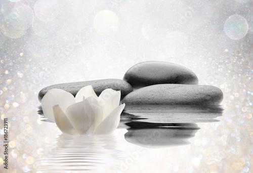 Foto op Canvas Zen spa de piedras flor y agua
