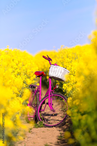 Staande foto Fiets pink bike in the field of rape