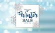 Winter Sale Background Special Offer Banner Background for Business and Advertising. Vector illustration.