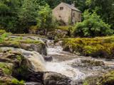 Amazing Cenarth Falls after heavy rain, Cenarth, Pembrokeshire, Wales, Uk