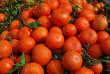 Fresh red tangerines with leaves in harvest season