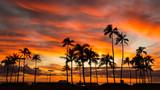 Hawaii sunset - 186819959