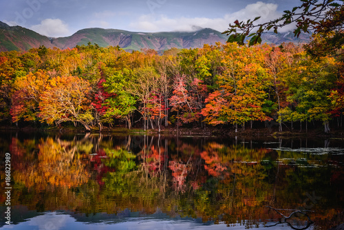 Foto op Canvas Herfst The autumn colors reflected in a lake at Shiretoko, Hokkaido, Japan
