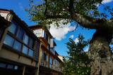 日本の古い街並み 主計町茶屋街 石川県金沢市 - 186825732