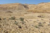 Rock formations in Israel desert