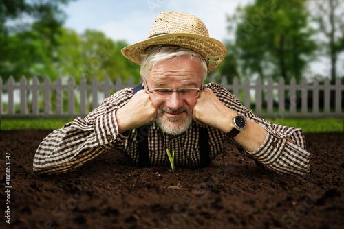 Foto Murales Gärtner guckt Pflanze beim Wachsen zu
