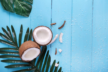 Coconut and palm branch on a blue table