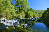 Peaceful mountain lake, pines and rocks - 186866732