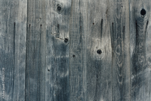old tree texture, gray color, fence, close-up - 186871728