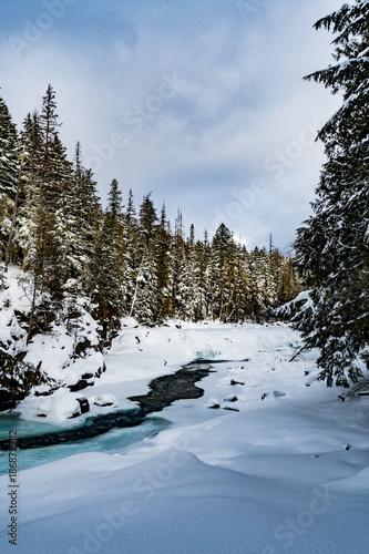 McDonald Falls, Glacier National Park In Winter - 186879982