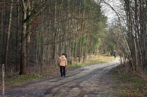 Road in forest Spacer leśną drogą