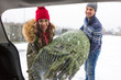 Couple Loading Freshly Cut Down Christmas Tree Into Back Of Their Car