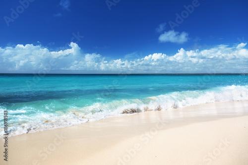 Foto op Aluminium Tropical strand beach on Catalina island Dominican republic