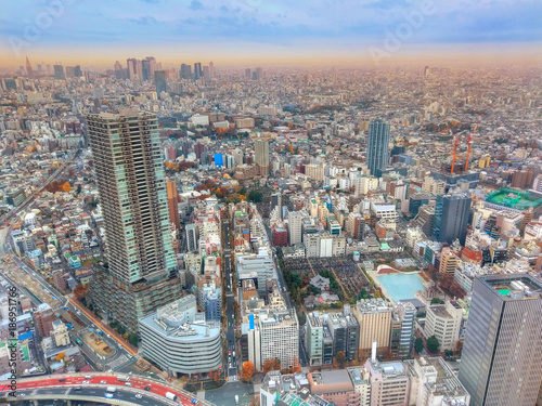 Fotobehang Tokio Beautiful aerial panorama over cityscape in Tokyo from the famous Sky-tree tower, in Japan, Asia