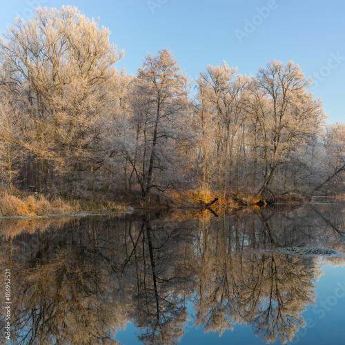 Fotobehang Herfst Morning on a Vorskla river at late autumnal season, Sumskaya oblast, Ukraine