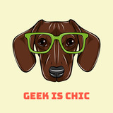 Head Dachshund dog in a geek glasses. Vector