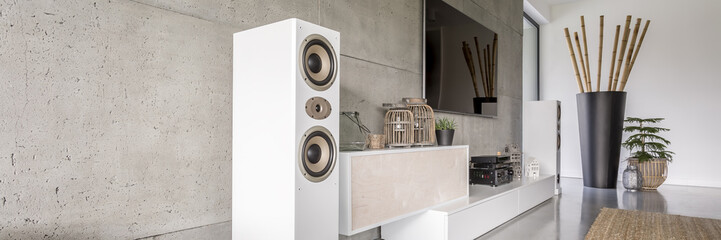 White loudspeaker in modern living room