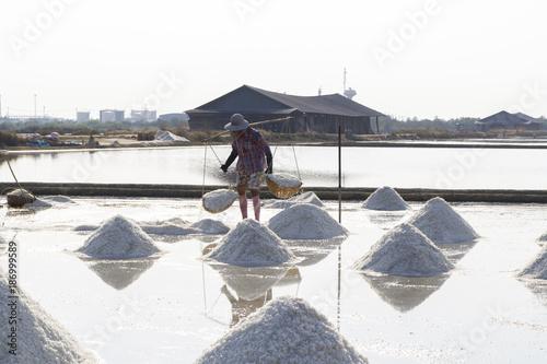 Salt farming labourer carrying full buckets of sea salt in the field