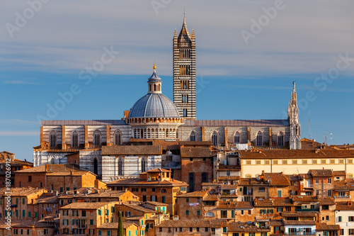 Foto Murales Siena. Cathedral on a sunny day.