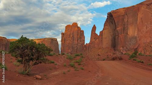 Staande foto Diepbruine monument valley navajo tribal S.W. USA