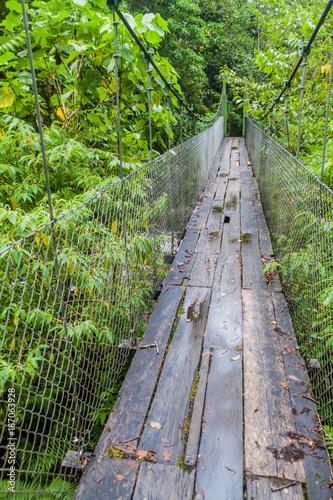 Foto Murales Suspension bridge at the hiking trail Sendero Los Quetzales in National Park Volcan Baru during rainy season, Panama.