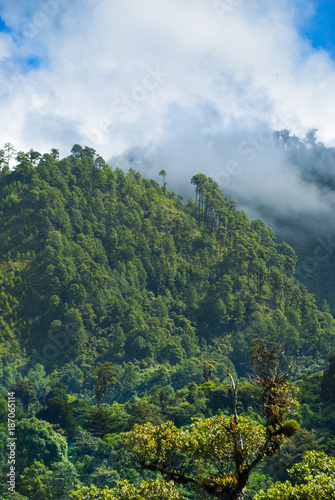 Foto op Aluminium Khaki Mountains rural view of Baja Verapaz, Guatemala.