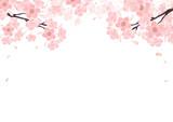 Fototapety 桜 背景