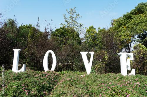 Foto Murales beautiful park in blue sky
