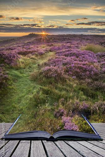 Keuken foto achterwand Beige Stunning dawn sunrise landscape image of heather on Higger Tor in Summer in Peak District England