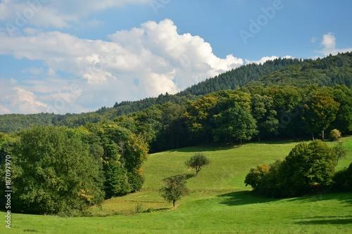 Fotobehang Pistache Landschaft zwischen Ursenbach und Oberflockenbach im Odenwald
