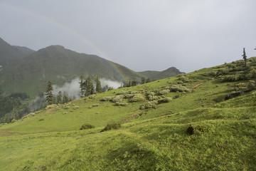 beautiful mountain scene
