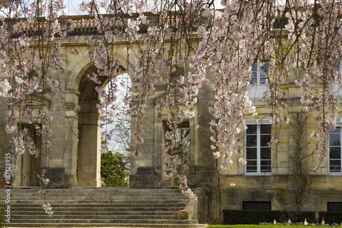 Foto Murales Jardin Public de Bordeaux