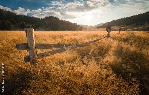 Fotobehang Landschappen Fence